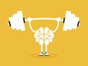 6 важни за мозъка витамини и минерали