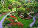 Великолепие от цветове и аромати, създаването на истинска вълшебна градина