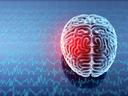 5 начина, по които стресът вреди на мозъка