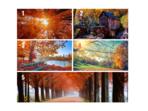 Тест: Каква есен ви очаква в личен план?