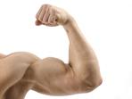 10 впечатляващи факта за мускулите