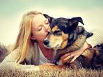 5 ползи за здравето от съжителството с домашен любимец