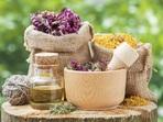 4 билки, регулиращи хормоните