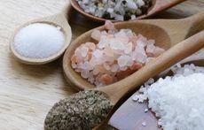 Екзотични видове полезна сол