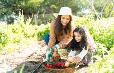 Защо градинарството е толкова полезно?