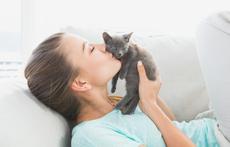 7 причини защо котката ви е по-добра от партньора
