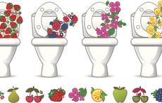 Домашни ароматизатори за тоалетна