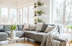 13 идеи как да декорирате растенията