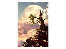 Притча за нещастното дърво