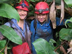 Националният природонаучен музей обявява конкурс за ученическо есе