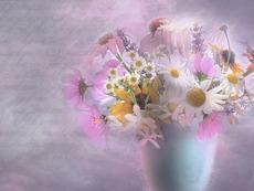 19 март – честит имен ден на Дария, Дарина, Дарин и Найден