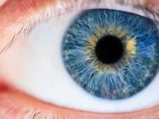 Безплатни очни прегледи във ВМА