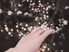 Мисъл на деня за... пролетта