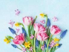 4 зодии, за които март ще е прекрасен