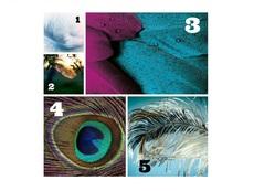 Изберете си перо и вижте какво ви съветват ангелите