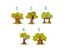 Изберете дърво и вижте какво ви очаква през новата година