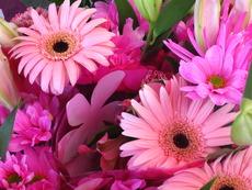 Днес празнуваме Цветница!