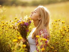 Растения, които привличат положителната енергия
