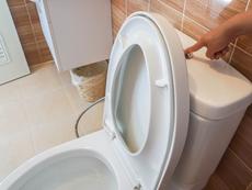Защо не трябва да пускаме водата в тоалетната при отворен капак?
