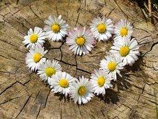 Мисъл на деня за силата на любовта