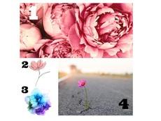 Изберете цвете и вижте какво ви очаква в последната седмица на август