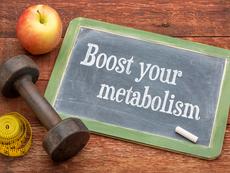Типове метаболизъм и хранене според тях