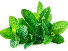 Как да подобрите телесната си миризма?
