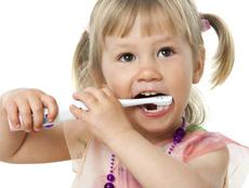 Стволови клетки от зъб? Възможно е!