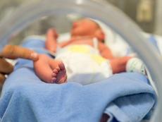 Силке Мадер: Само 20% от всички преждевременно родени бебета са напълно здрави