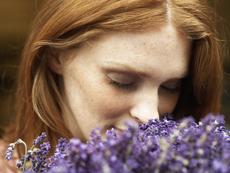 5-те най-ефикасни билки срещу тревожност