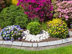 Естествени методи за подхранване на почвата