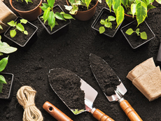 5 стъпки за подготовка на градината за пролетта