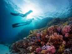 Здравословни ползи от морската вода