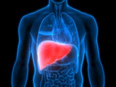 Как да се храните при омазнен черен дроб