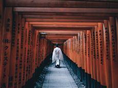 Красотата на Япония (галерия)