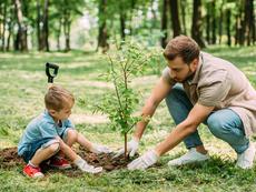 5 занимания за децата през лятната ваканция, които развиват ума