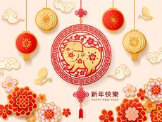 Хороскоп за годината на Жълтата земна Свиня (част първа)