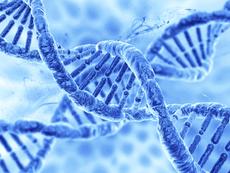 Вдъхновение на седмицата: Как да надвиете гените си? (видео)