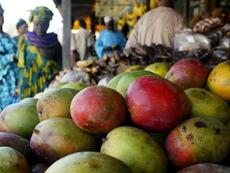 Тропическите плодове – витаминните приятели на зимата