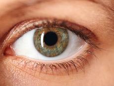 Храни, полезни за здравето на очите (галерия)