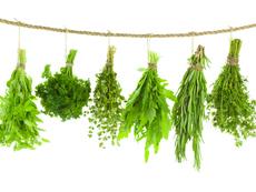 Как правилно да съхраняваме билките