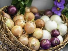 Какво се случва в тялото, ако ядете лук редовно?