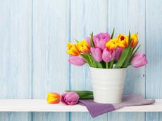 Трикове за свежи цветя у дома