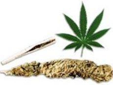 Истината за наркотиците