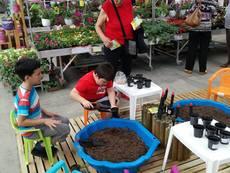 Десетки малчугани станаха градинари за 1 ден в магазините на HomeMax