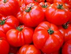 Невероятни ползи от доматите за здравето