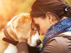 Безценни уроци, на които кучето ни учи