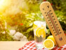 Методи за естествено противодействие на жегата