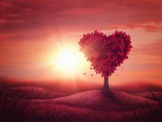 Любовен хороскоп за 12 – 18 март 2018