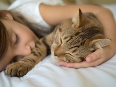 Здравословни причини да не спите с домашния си любимец